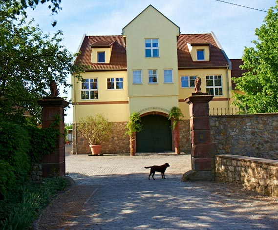 Heiraten Im Rheingau Die Wahl Der Location